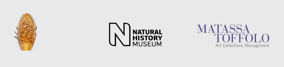 Matassa Toffolo Natural History Museum